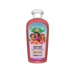 Shampoing Embellisseur Hibiscus 250 ML